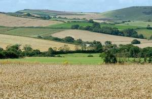 s300_farm-country-PL-1006277