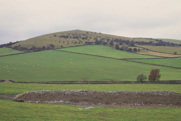 A rural landscape