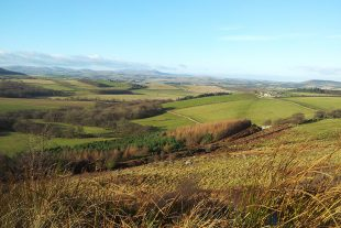 Landscape of hills with mixed farming in Northumberland
